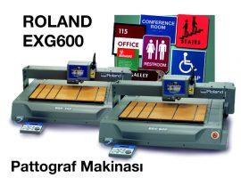Roland EGX600 Pantograf Grave